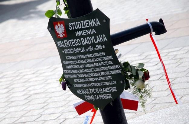 Studzienka Walentego Badylaka na Rynku Głównym /Marek Lasyk  /Reporter