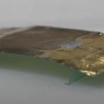 Stworzono innowacyjnego robota inspirowanego karaluchem