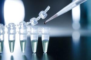 Stworzono nowy typ komórek macierzystych