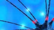 Stworzono sztuczny neuron
