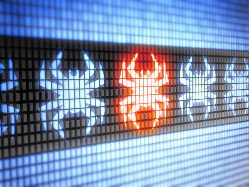Stworzony przez Morrisa robak był pierwszym tego typu szkodliwym programem w sieci /123RF/PICSEL