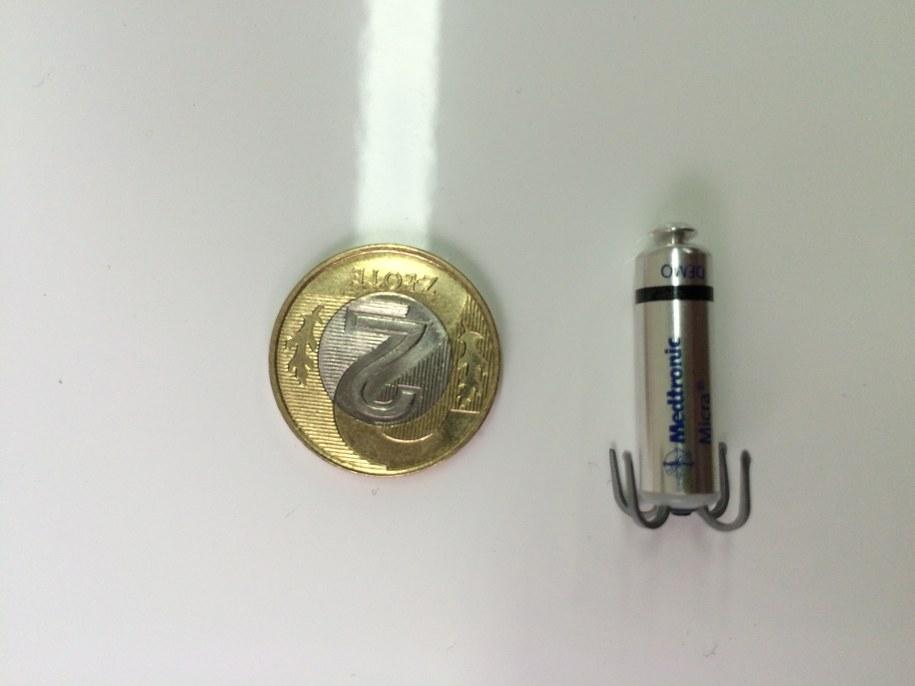 Stymulator wielkości 2-złotówki /Mariusz PIekarski /RMF FM
