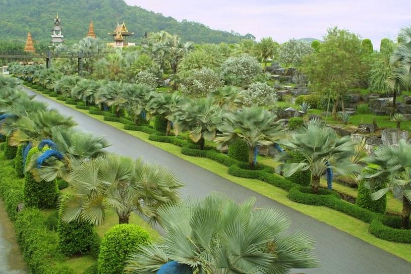 Suan Nong Nooch w Tajlandii /123/RF PICSEL