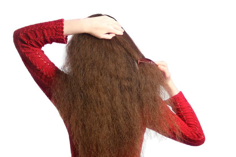 suche włosy /© Photogenica