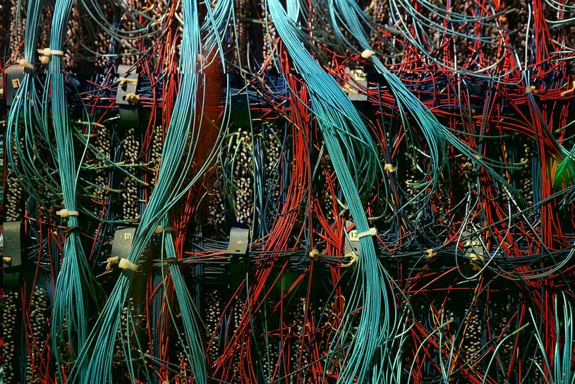 Superkomputer Google będzie mógł sam się programować /123RF/PICSEL