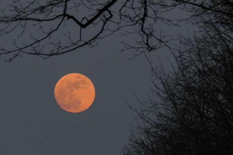 Superksiężyc /Tomasz Kawka /East News