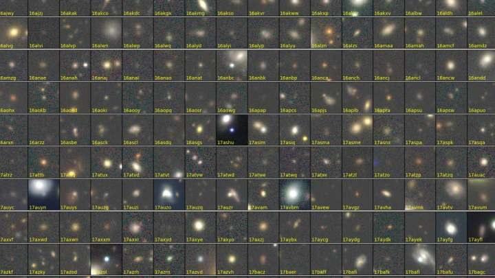 Supernowe odkryte przez japońskich naukowców /materiały prasowe