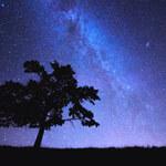 Supernowe źródłem antymaterii w Drodze Mlecznej