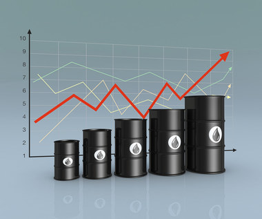 Surowce. OPEC z najniższym wydobyciem od 1991 r.