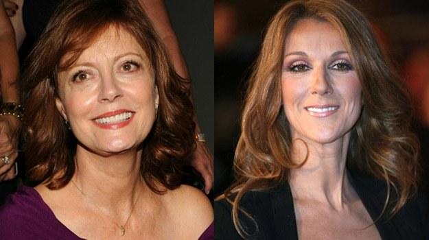 Susan Sarandon i Celine Dion prowadzą od lat działalność społeczną /AFP