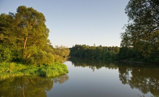 Susza hydrologiczna w Łódzkiem: Są alerty m.in. dla Warty [MAPY]