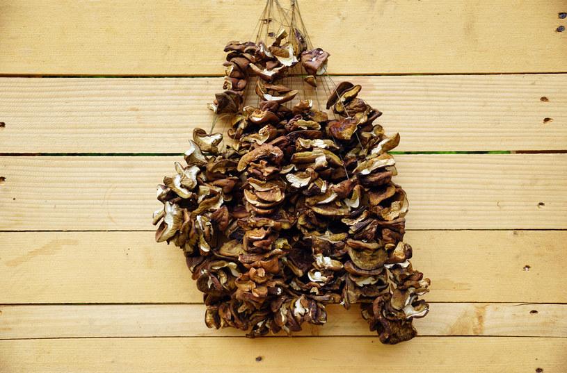 Suszenie to najstarsza metoda pozwalająca cieszyć się smakiem grzybów także zimą /123RF/PICSEL
