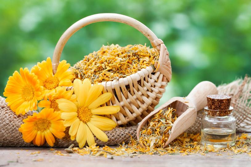 Suszone kwiaty nagietka przyniosą ulgę podrażnionej skórze /123RF/PICSEL