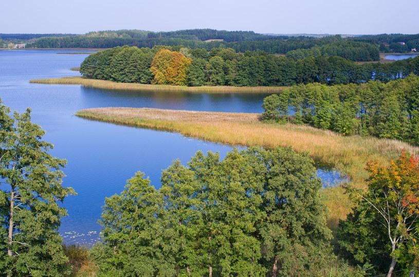 Suwalszczyzna - dużo lasów, wszędzie woda /123RF/PICSEL