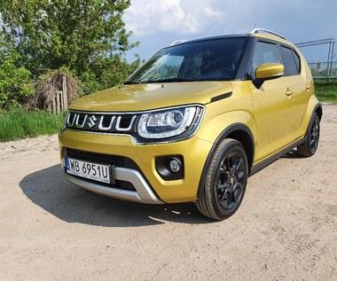 Suzuki Ignis - do miasta i na bezdroża