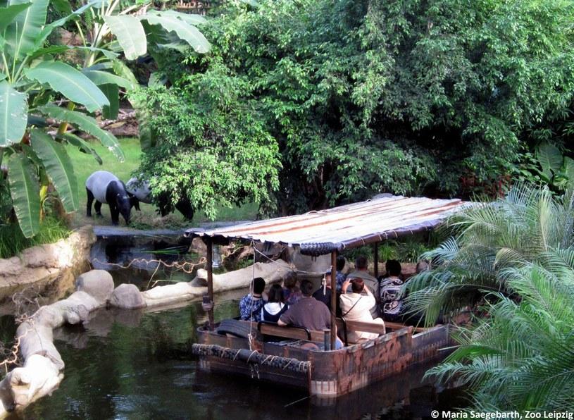 Świat tropików Gondwanaland /materiały promocyjne