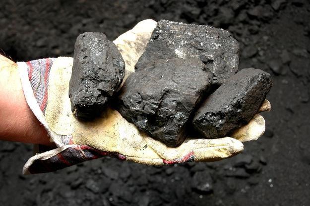 Świat z węgla rezygnować nie zamierza /© Panthermedia