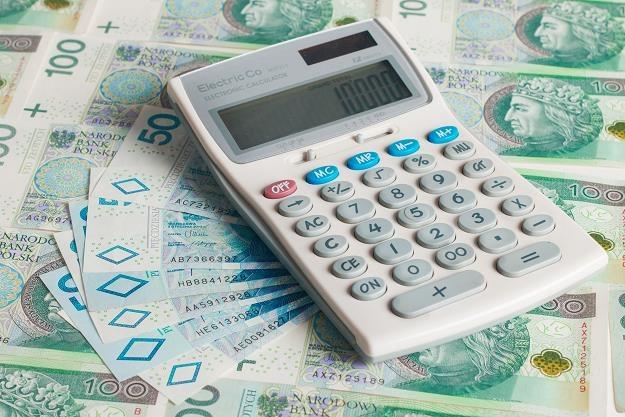Świąteczne wydatki? Polskie rodziny nie skąpią grosza /©123RF/PICSEL
