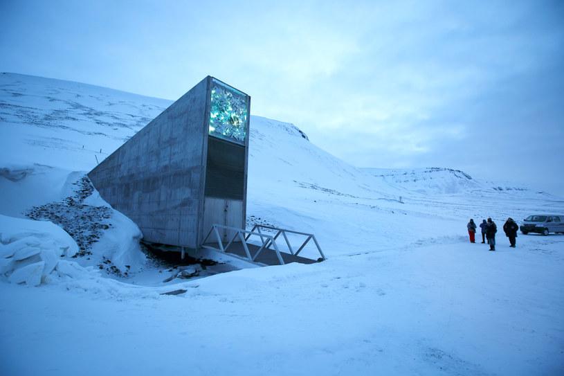 Światowe Archiwum Arktyczne podobne do Globalnego Banku Nasion /AFP