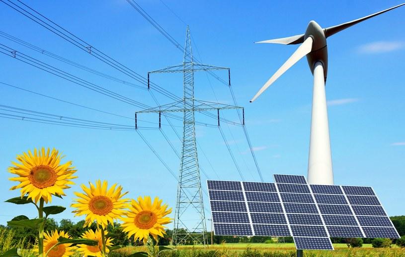 Światowe inwestycje w energię odnawialną osiągnęły w 2015 roku rekordowy poziom /123RF/PICSEL