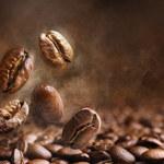 Światowe zasoby kawy zagrożone wyginięciem