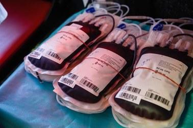 Światowy Dzień Dawcy Szpiku. Uratuj komuś życie!
