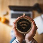 Światowy Dzień Wi-Fi - najważniejsze trendy w sieci bezprzewodowej