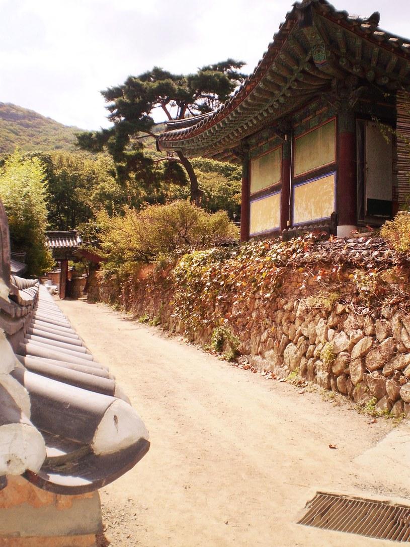 Świątynia Beomeosa to największa atrakcja Pusan /©123RF/PICSEL