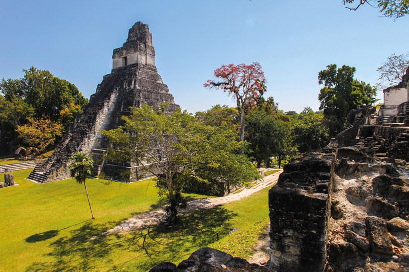Świątynia Majów w Tikal /materiały prasowe
