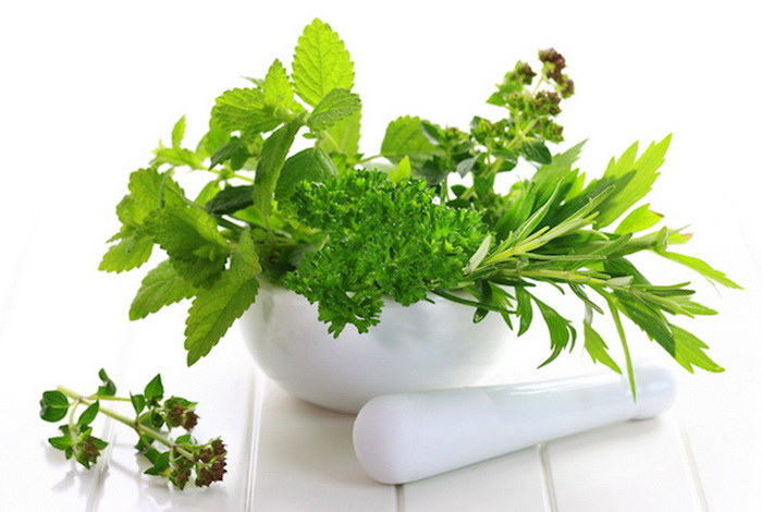 Świeże zioła zastosowanie /© Photogenica