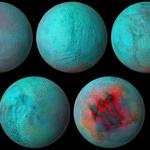 Świeży lód na Enceladusie