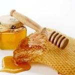 Świeży miód lepszy niż probiotyki