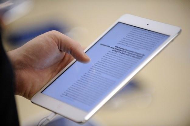 Swoją cegiełkę do produkcji nowych iPadów mini dorzuci Samsung? /AFP
