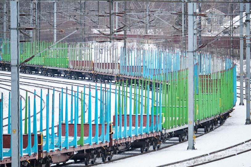 Swoją decyzję władze fińskich kolei motywują względami ekologicznymi /123RF/PICSEL