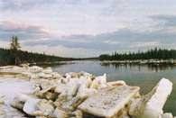 Syberia, tundra /Encyklopedia Internautica