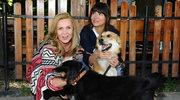 Sylwia Wysocka pogryziona przez psa na pokazie. Konieczna była operacja