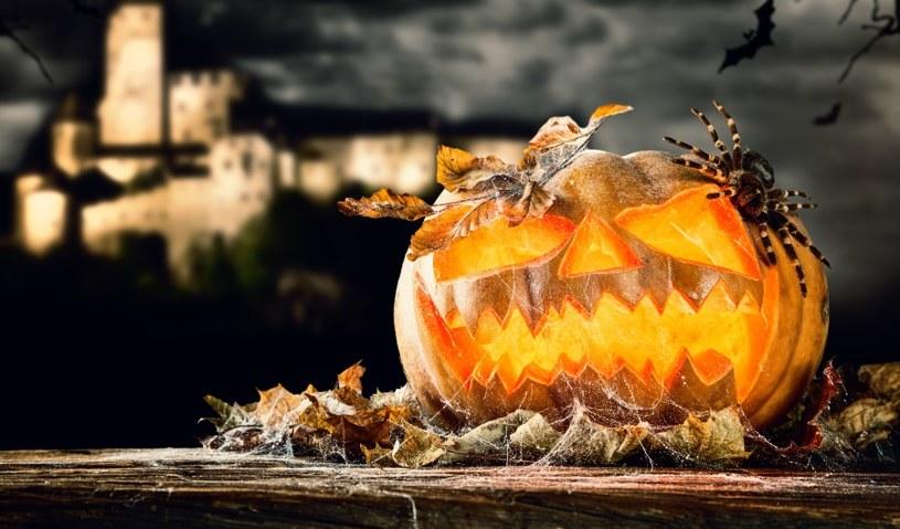 Symbolem Halloween jest dynia /©123RF/PICSEL