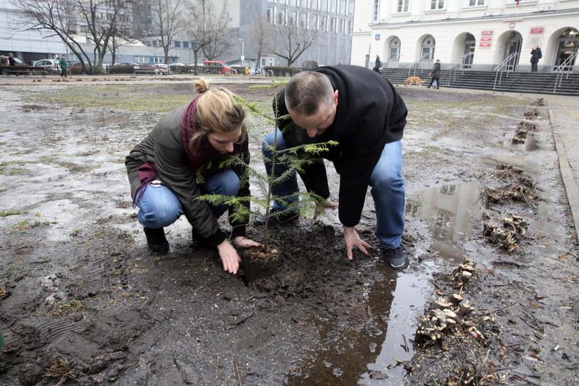 Symboliczne zasadzenie drzewka podczas konferencji prasowej partii Razem przed Urzędem Dzielnicy Śródmieście przy ul. Nowogrodzkiej /Tomasz Gzell /PAP
