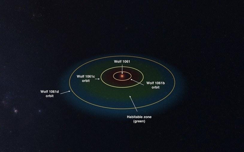 Symulacja orbit planet, krążących wokół gwiazdy Wolf 1061 /materiały prasowe