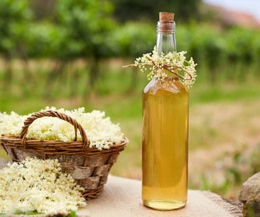 Syrop z kwiatów czarnego bzu: Dlaczego warto go pić? Jak go zrobić?