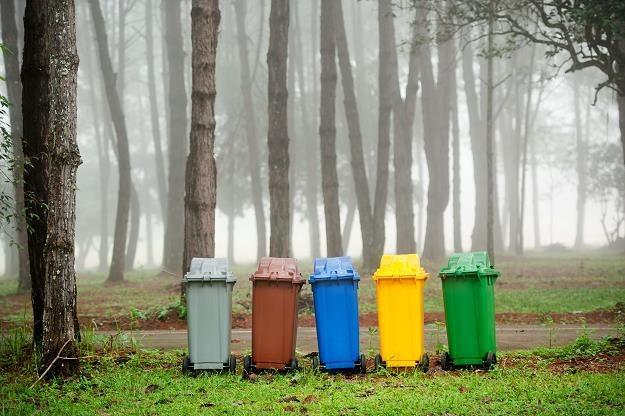 System segregacji i wywozu śmieci nie działa poprawnie /©123RF/PICSEL