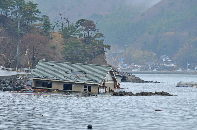 Sytuacja w Japonii, chociaż w 2011 roku była tragiczna, byłaby nieporównywalna do szkód wywołanych przez uskok San Andreas /123RF/PICSEL