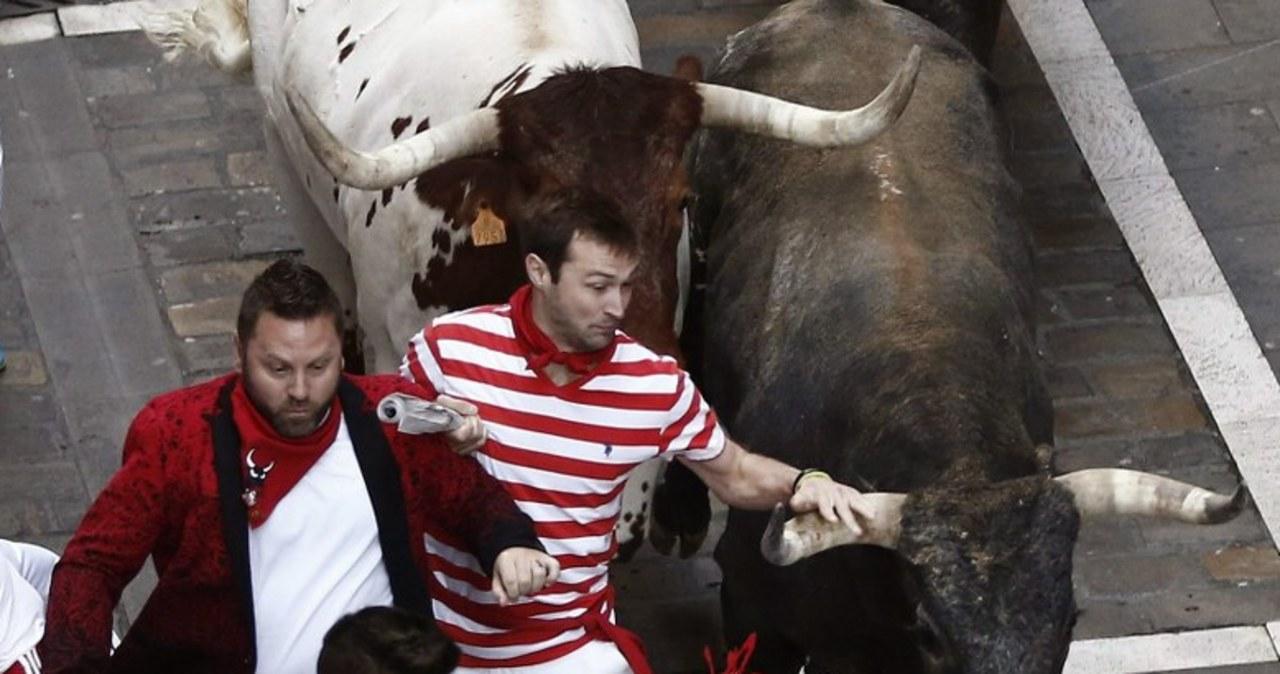 Szaleńcza gonitwa z bykami w Pampelunie