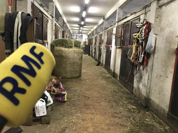 Szatnia sportowców-koni wyścigowych od kulis w cyklu Twoje Niesamowite Miejsce w Faktach RMF FM. /Michał Dobrołowicz /RMF FM
