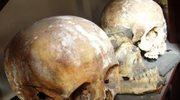 Szczątki ludzkie na obdukcję