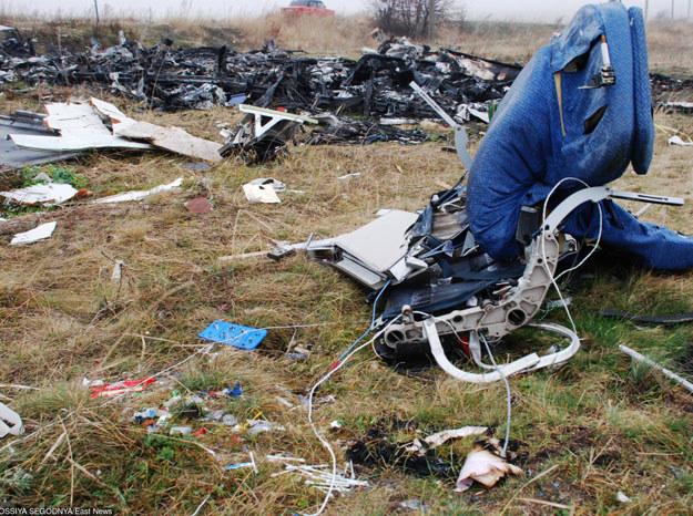 Szczątki samolotu MH17 /RIA Novosti /East News