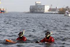Szczecin: Zakończył się spływ morsów Odrą