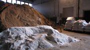 Szczecińskie firmy zajmujące się odśnieżaniem czekają na zimę