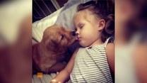 Szczeniak nie może przestać rozdawać buziaków dziewczynce