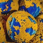 Szczepionka przeciwko HPV drastycznie zmniejsza ryzyko raka
